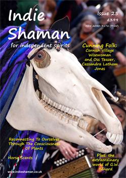 Shaman Penk